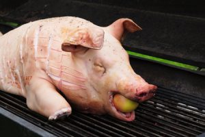 young pig prepared to be cooked on a big grill